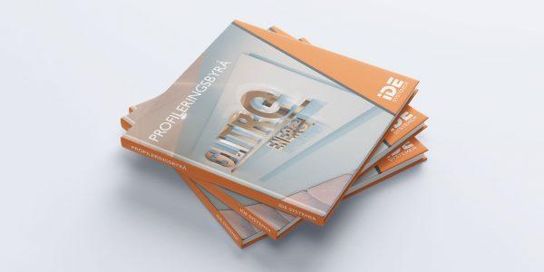 Design av katalog for IDE Systemer i henhold til bedriftens identitet.